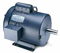 Leeson Single Phase Totally Enclosed Fan Cooled (TEFC) Motors Secondary