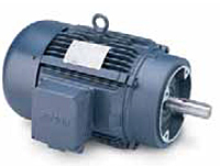 Leeson Three Phase C Face Less Base TEFC Motors Secondary