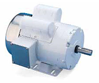 Leeson Single Phase TEFC Rigid Base Washguard Motors