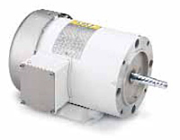 Leeson Three Phase TEFC JM Pump Washguard Motors