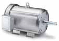 Leeson Three Phase TEFC JM Pump Washguard All-Stainless SSD Motors