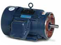 Leeson C Face with Rigid Base Three Phase Cast Iron Frame Explosion-Proof Motors