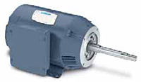 Leeson Single Phase Drip-Proof Rigid Base JP Pump Motors