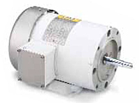 Leeson Three Phase TEFC Washguard JM Pump Motors