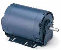 Leeson Drip-Proof Three Phase Resilient Base Motors