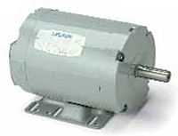 Leeson Three Phase Rigid Base Aeration Fan Motors