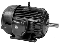 General Purpose Three Phase TEFC Corro-Duty® Premium Efficient Motors