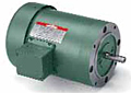 Leeson Wattsaver® Premium Efficiency TEFC C Face Less Base Motors