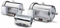 Leeson Three Phase TENV/TEFC C Face with Base Washguard All-Stainless SSD Motors