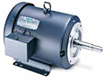 Leeson Three Phase TEFC Rigid Base JM Pump Motors