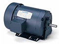 Leeson TEFC Three Phase Resilient Base Motors