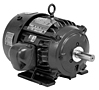 General Purpose Three Phase TEFC 841 Plus® Premium Efficient Motors