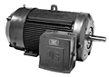 Titan® General Purpose Three Phase TEFC Corro-Duty® Premium Efficient Motors