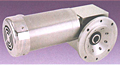 Right Angle Worm Drive Gearmotors